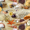 Landscape Medley - Packed Shells - Sand