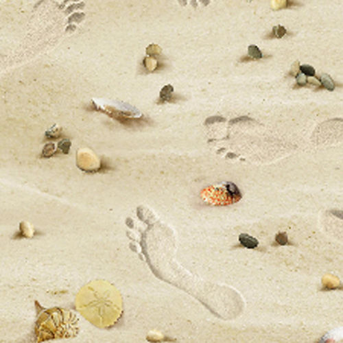 Landscape Medley - Footsteps on the Beach - Sand